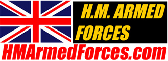 HM Armed Forces: Return to Base